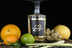 SCHNEIDERWIND Ambassador23 - Gin