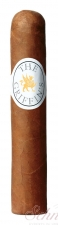 THE GRIFFIN´S Short Robusto
